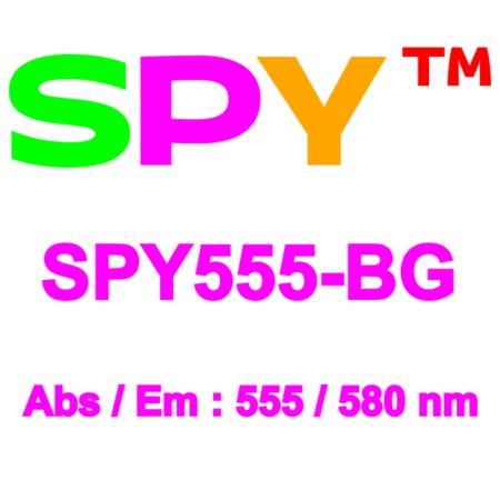 SPY555-BG