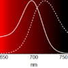 SiR700 Absorption and Emission Spectra